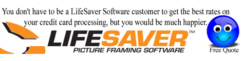 LifeSaver Software